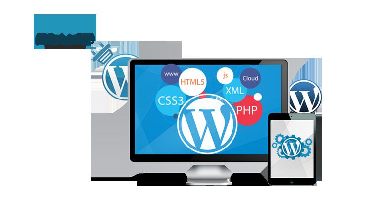top wordpress development company in delhi